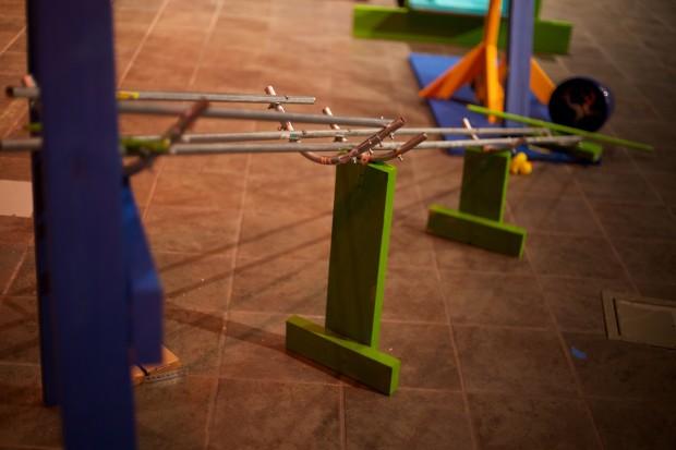 Rube Goldberg 12