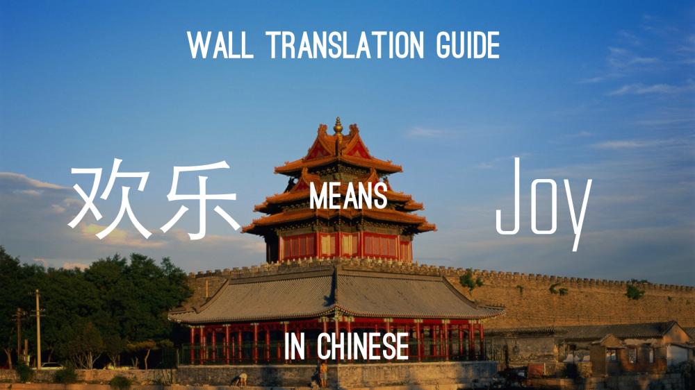 Joy-Chinese