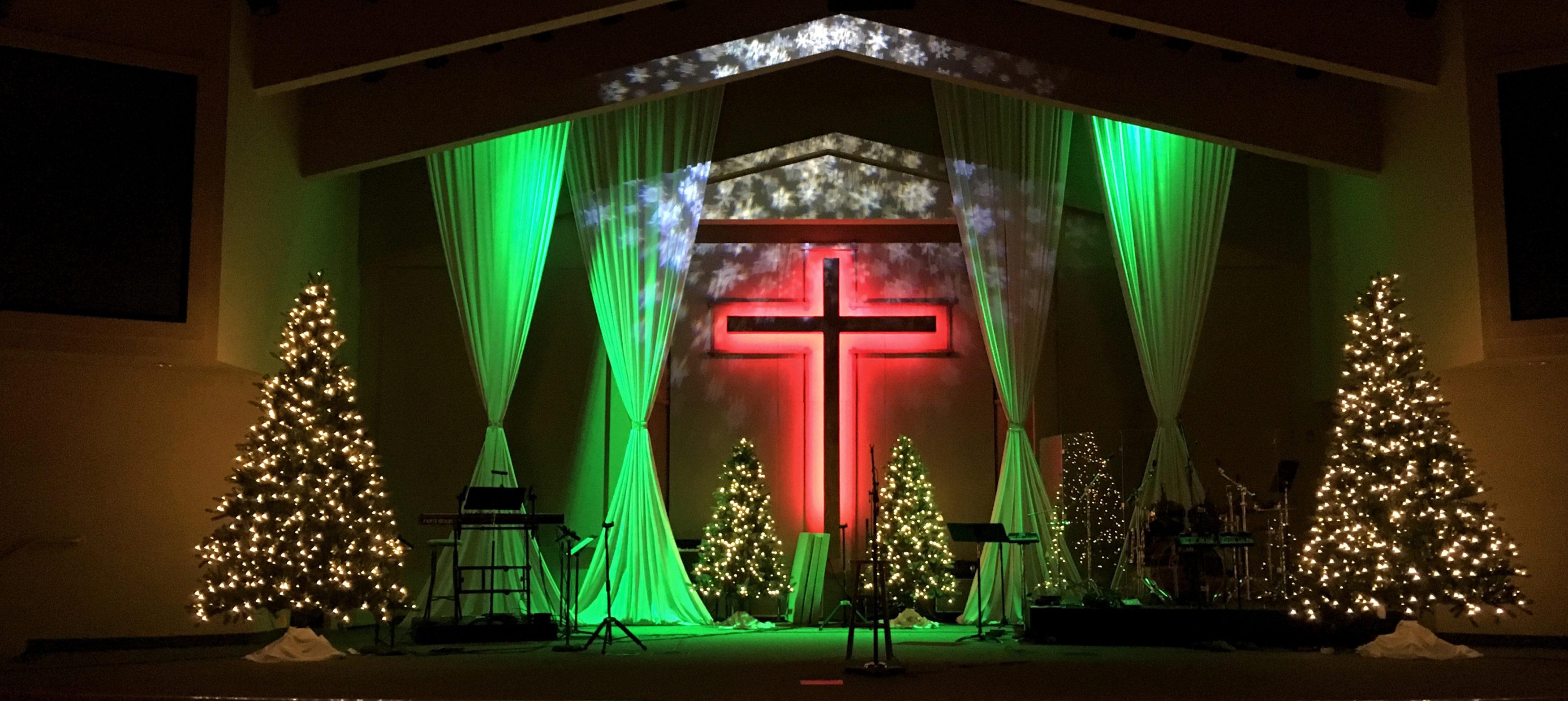 Poinsettia Christmas Light Set
